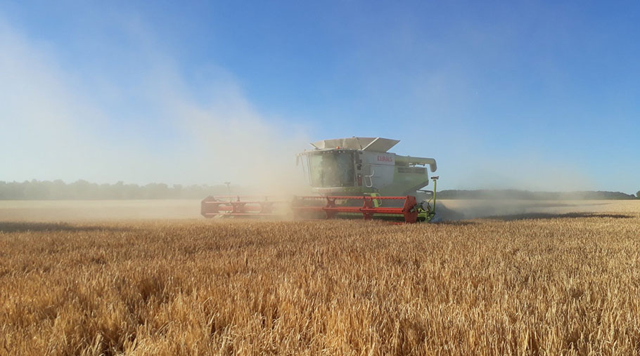A combine harvester works its way through winter barley