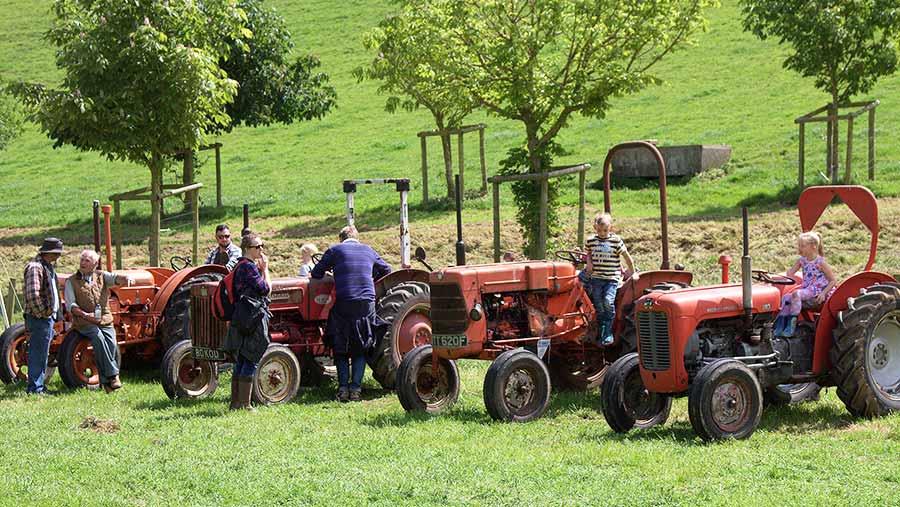 Open Farm Sunday at Gatecombe Farm