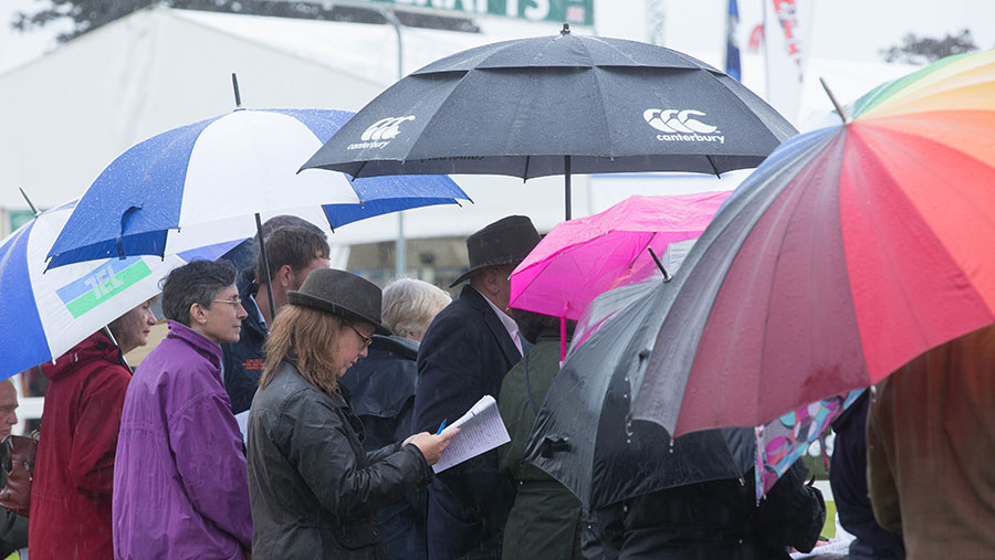 A crowd of people hold umbrellas as rain falls at an agricultural show