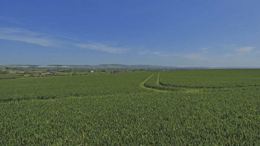 The Vale of Pewsey