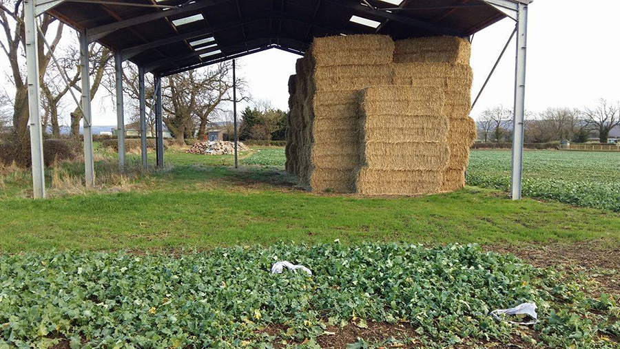 A shed full of straw bales, on the ground in front is the remains of a sky lantern
