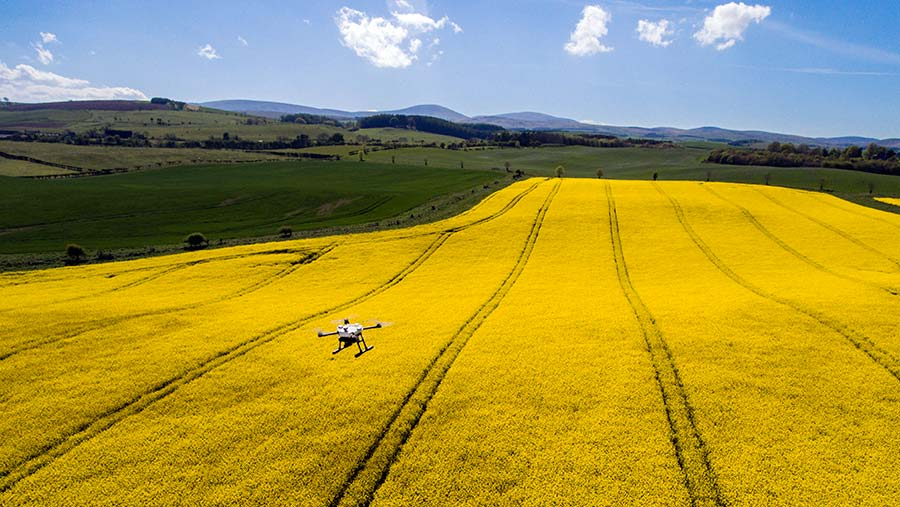Drone scanning oilseed rape© Drone AG