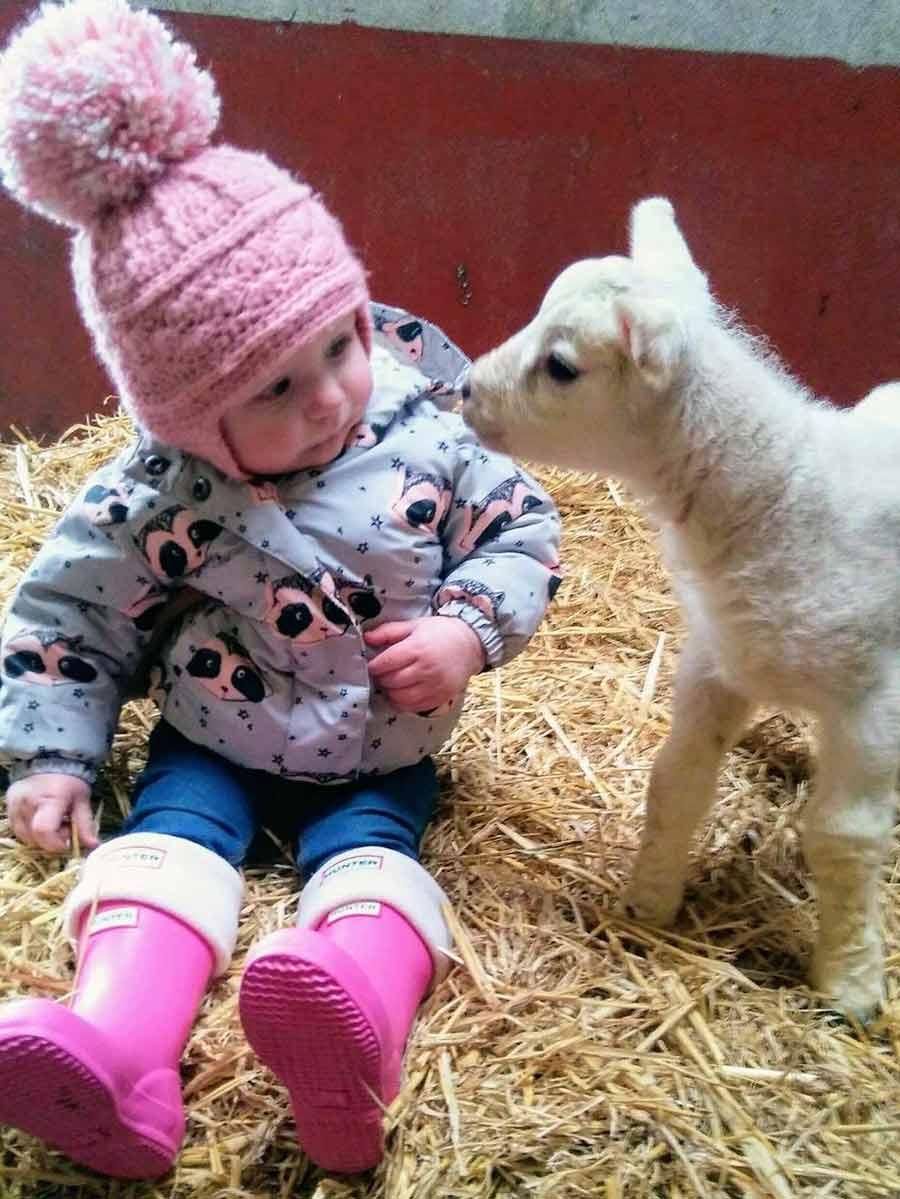 Lexi McMullan with lamb