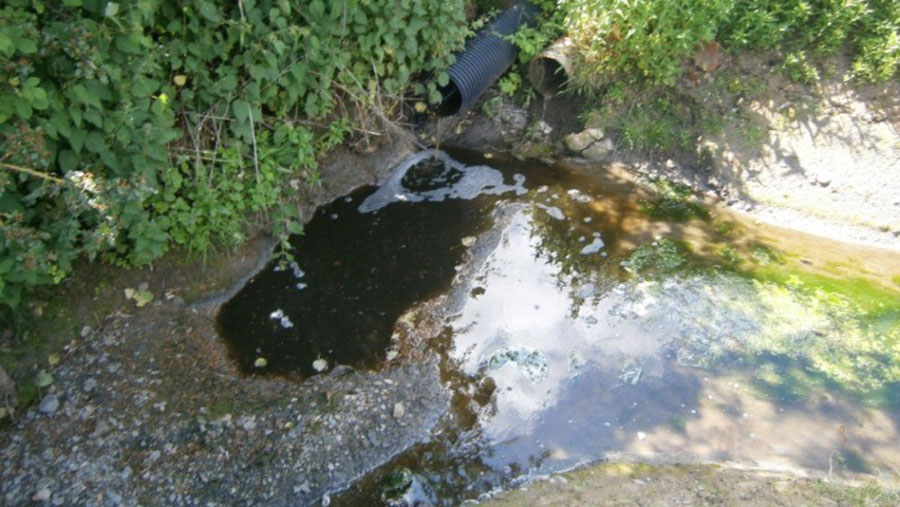 Water pollution in a river