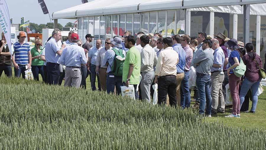 Crop plot tour at Cereals