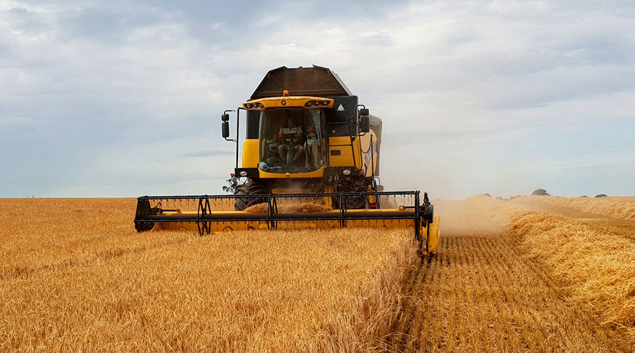 A combine works in a field of barley on Ally Hunter-Blair's farm