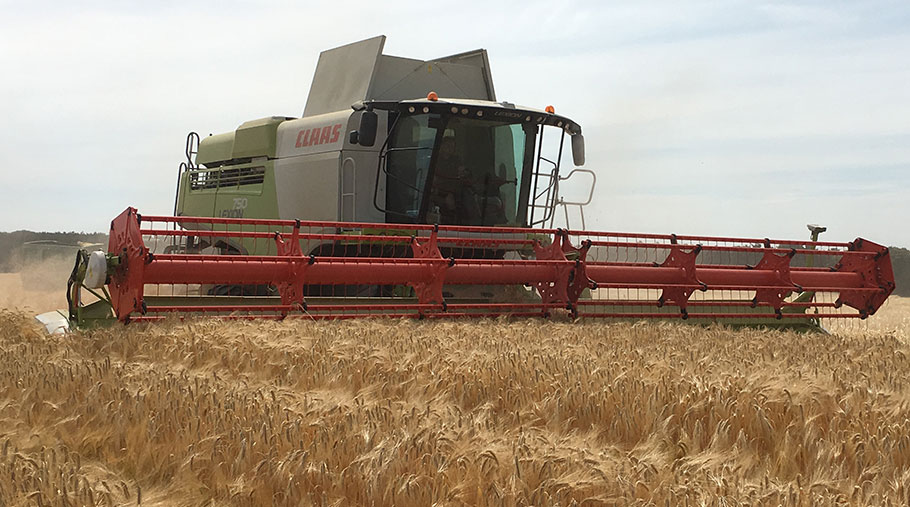A combine works through winter barley on Andrew Blenkiron's farm