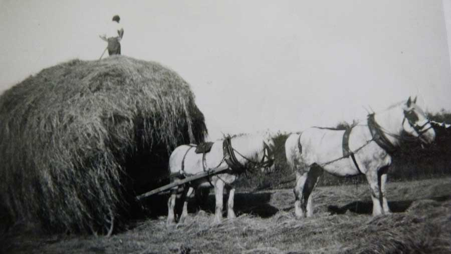 A black-and-white photograph shows Brian Fry standing on straw piled on a cart with two horses leading it