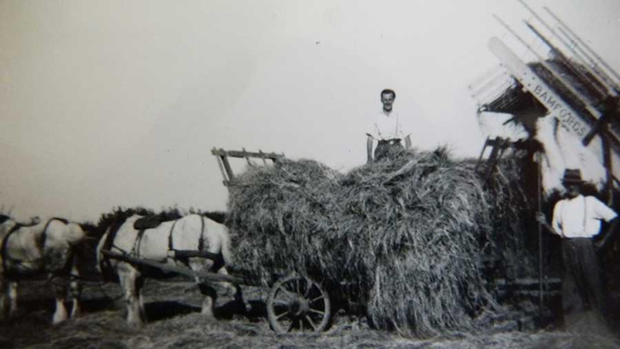 A black-and-white photograph showing Brian Fry on a hay cart led by two horses. Stood by the side of the cart is Jesse Fry