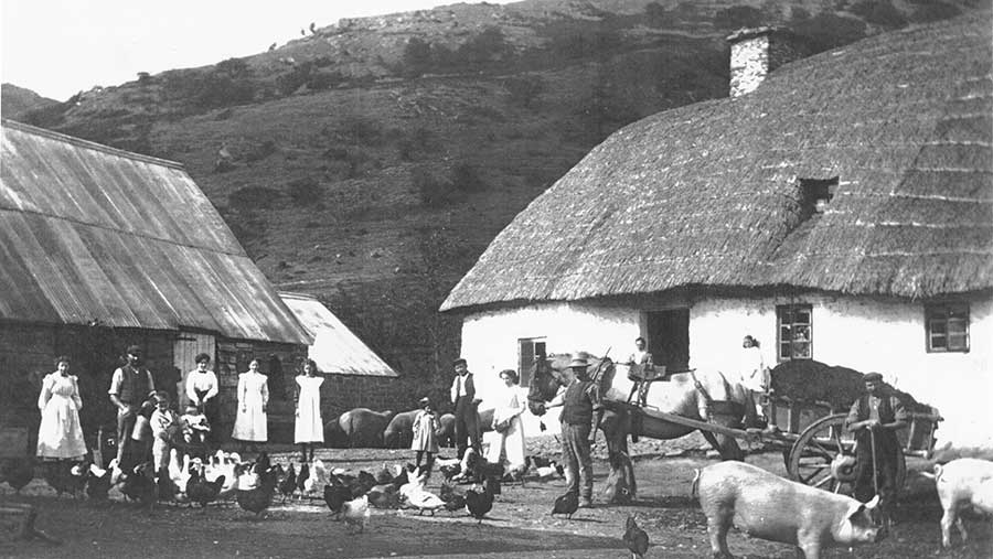 A black-and-white photograph shows a group of people standing outside thatched cottages. In the yard chickens and pigs roam. A horse leads a cart