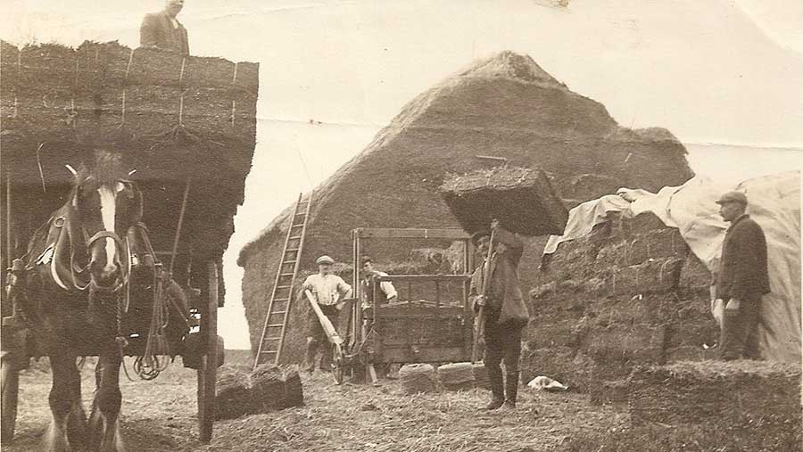 A black-and-white photograph of people working on a farm