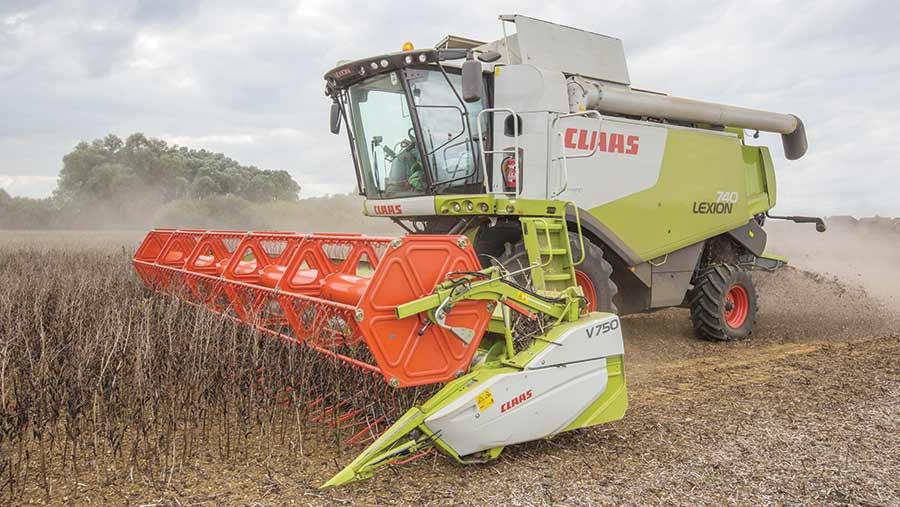 A combine harvests beans