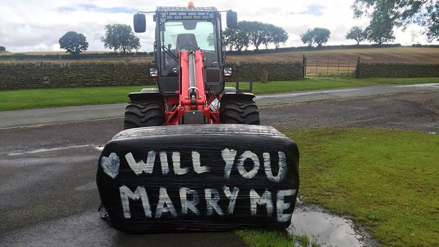 """Alex Ross wrote """"Will you marry me?"""" on a silage bale"""