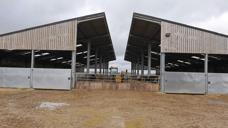 Front view of cow shed