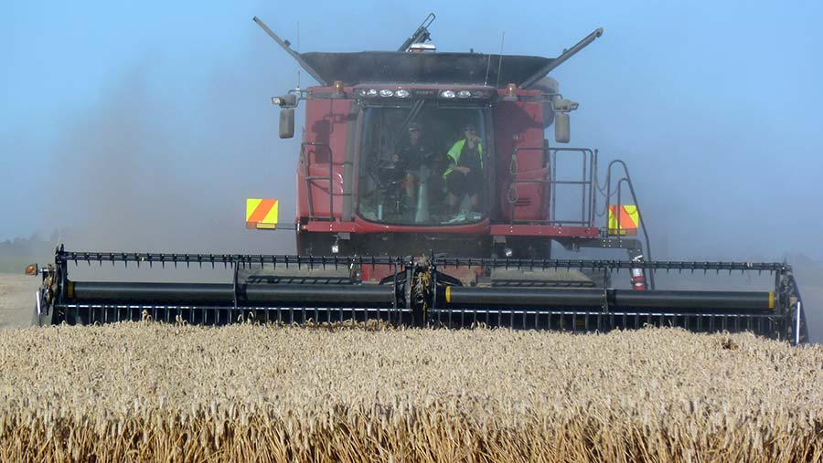 Eric Watson's world record breaking wheat crop being harvested