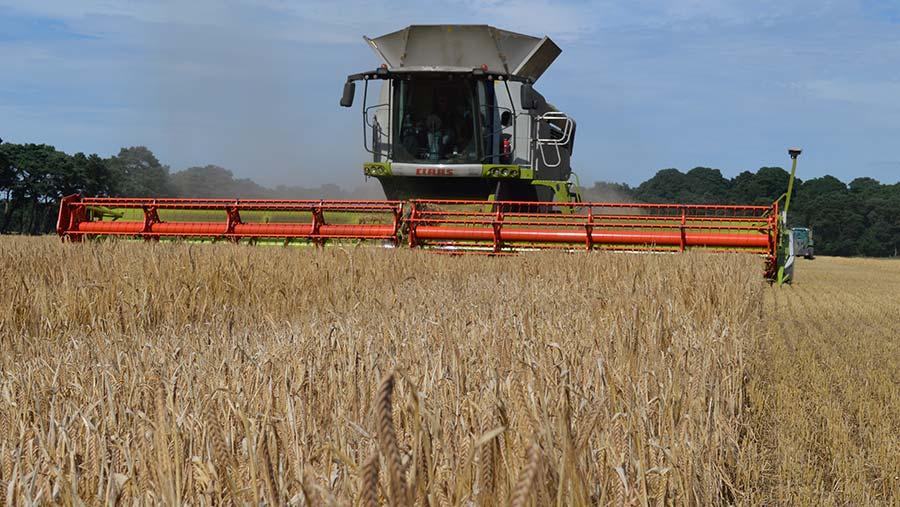 Winter barley harvest 2017 Elveden Estate © David Jones/RBI