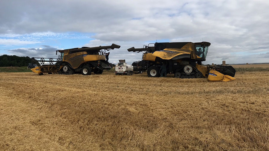 Combines harvest wheat in Josh Stratton's fields