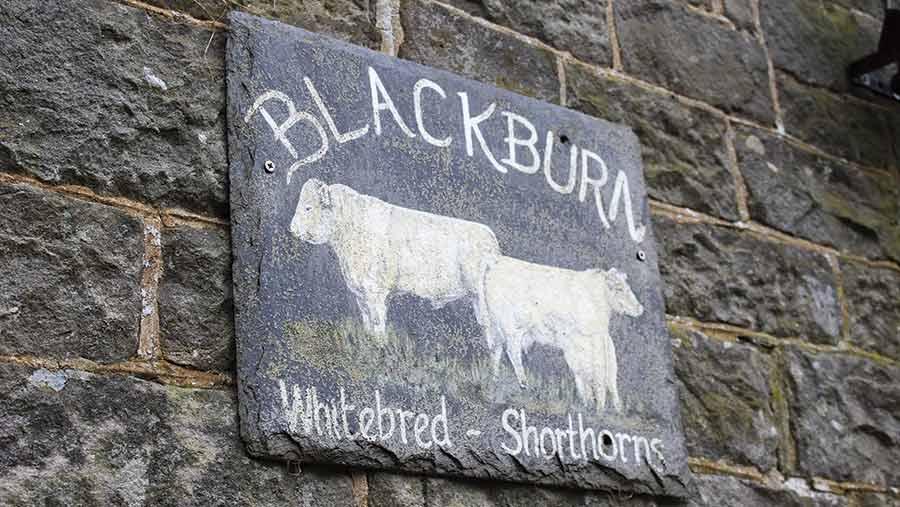 Blackburn farm sign