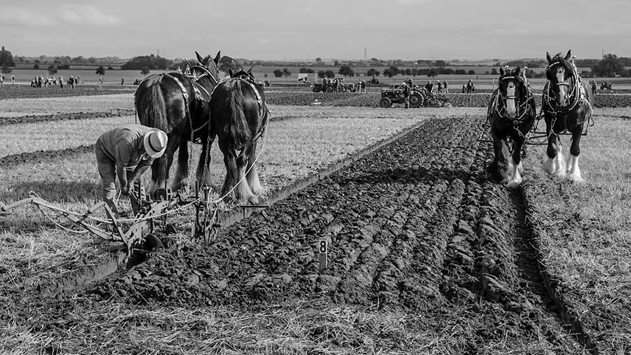 Black and white ploughing match © Will Jones