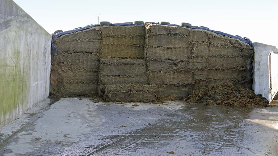 A silage clamp