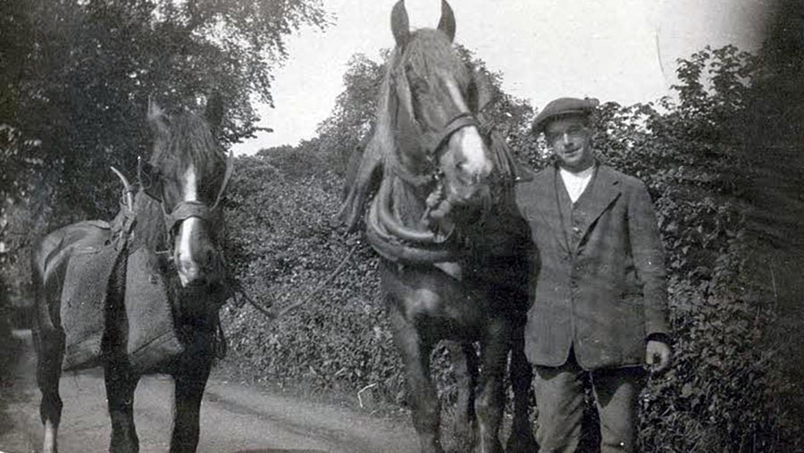 Alfred Cummins with horses