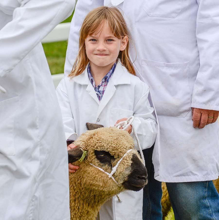 Girl showing sheep at Royal Cornwall Show 2018