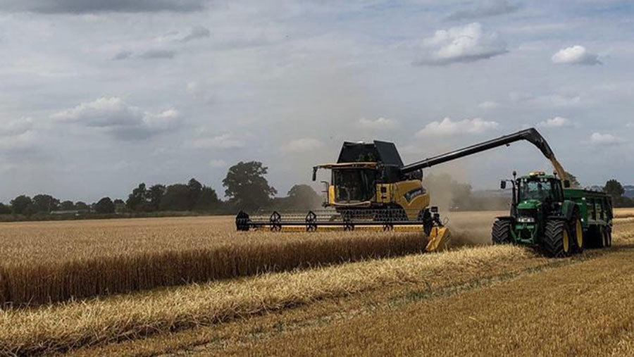 Harvesting on Andrew Walters' farm