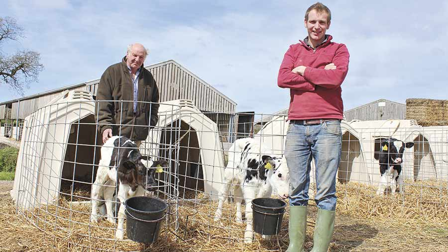 Wakely and Rupert stand outside calf hutches