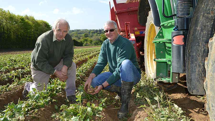 Peter and Philip Le Maistre in a potato field with a tractor