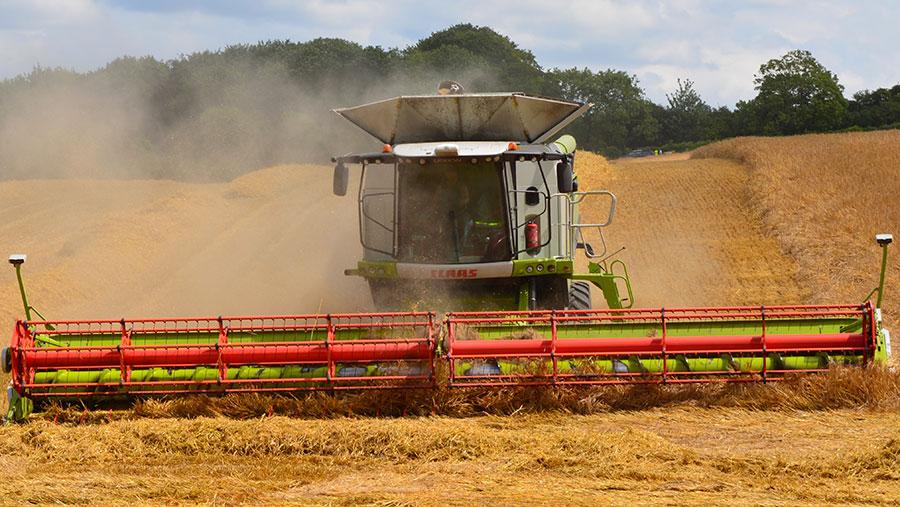 A combine works through winter barley
