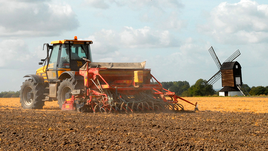 Winter wheat being drilled