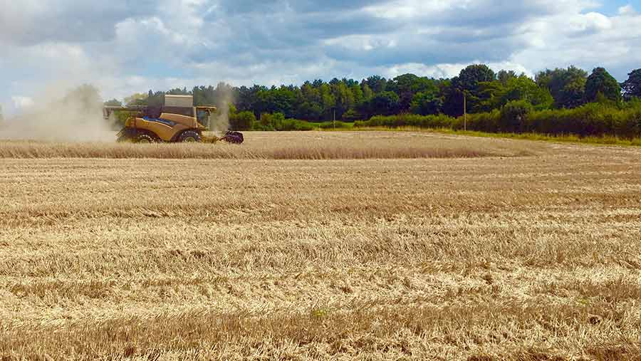 A harvester works in a field of rye