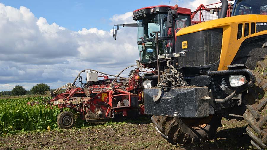 Sugar beet harvesting in Lincolnshire © David Jones