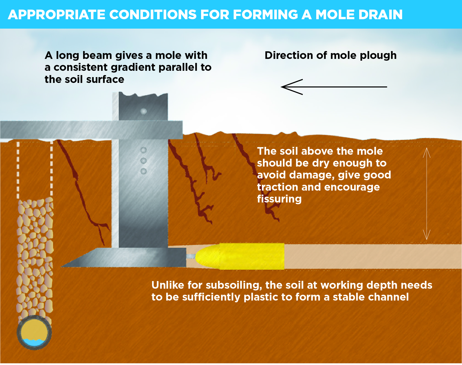 An illustration showing a mole drain