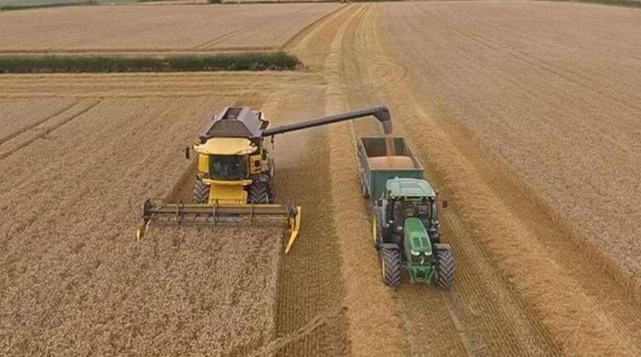 Harvesting on Gynn Jones' farm