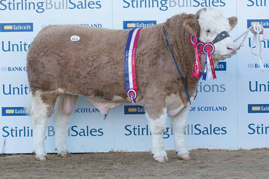 Sale leader Corskie Gingersnap from Iain Green sold to Vikki and Jimmy Wood, Preston