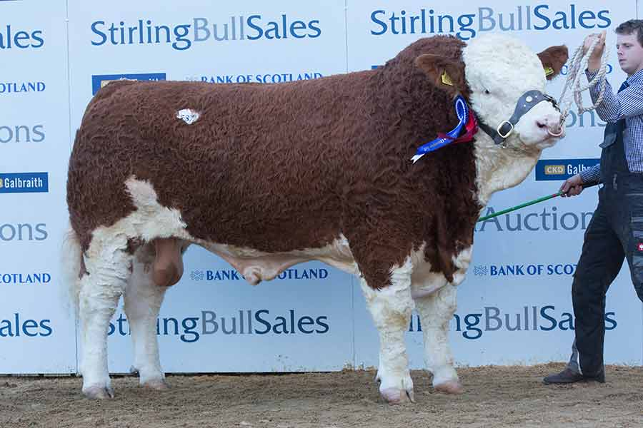 Islavale Galahad from WS Stronach sold to AD Sutherland