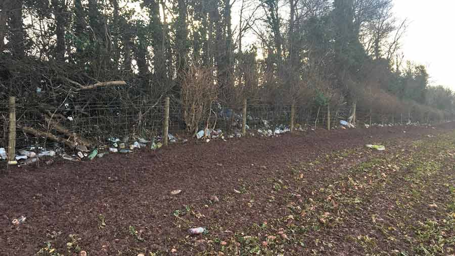 Flanesford fly tipping