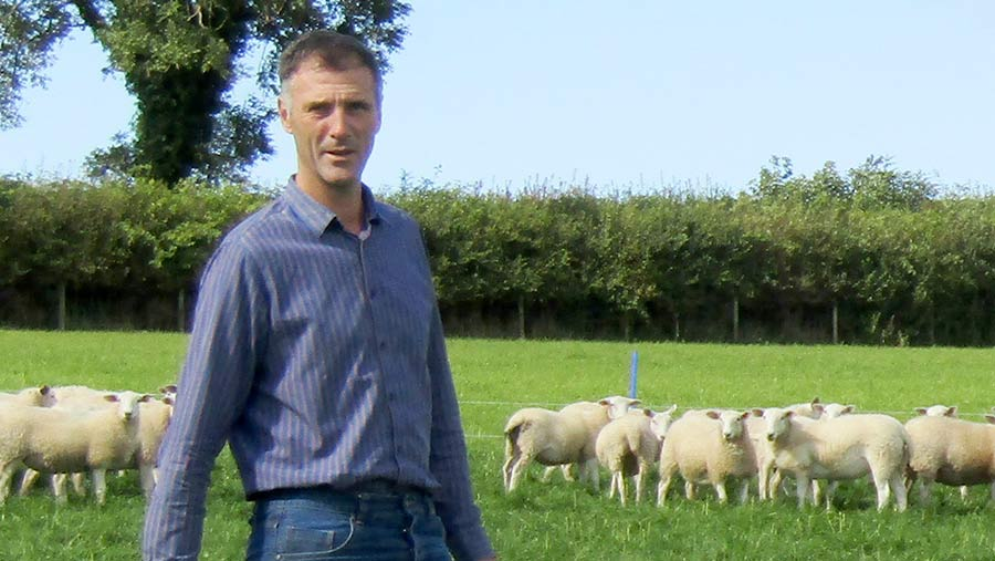 Rhun Fychan in a field with sheep