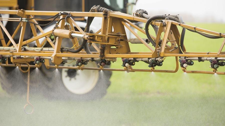 fungicide spraying