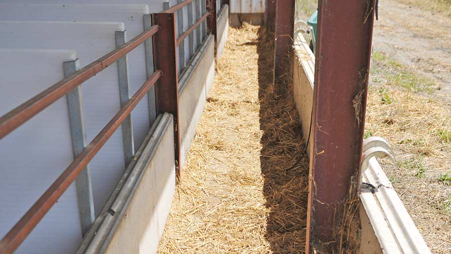 An ventilation passage in a livestock shed