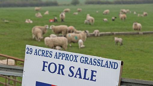 Expert Advice On Preparing Farmland For Sale Farmers Weekly