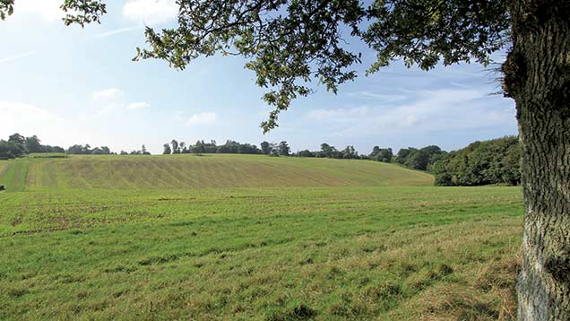 Sale highlight of the year: Eastlands Park, Horsham. Sold in excess of £11m guide as a whole, including 520 acres of Grade 3 arable and grassland, growing a rotation of wheat, oilseed rape and spring barley..