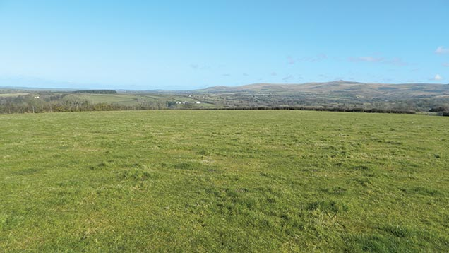 About 59 acres of grazing is for sale in Dartmoor National Park.