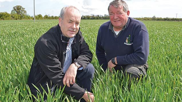 Seamus Shevlin (left) and Martin Hoste.