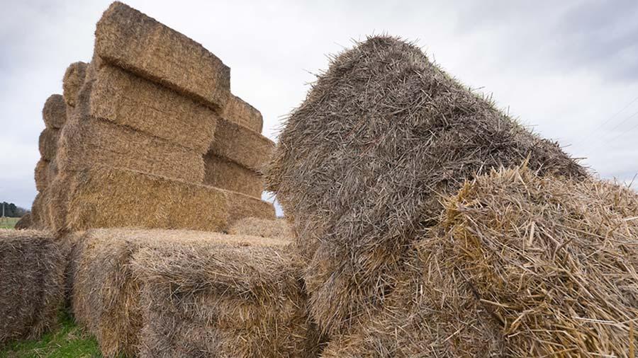 Badly stacked bales © Tim Scrivener
