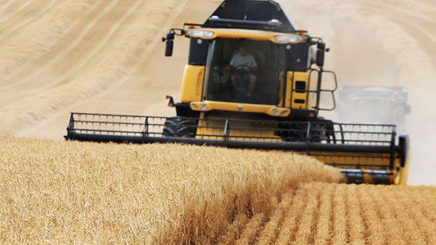 Barley harvest France ©GUTNER-SIPA-REX