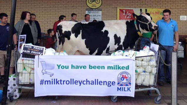 """Farmers took dairy cow """"Hoops Flower"""" from Hopps Holsteins to the protest at Morrisons in Bideford on Sunday morning."""