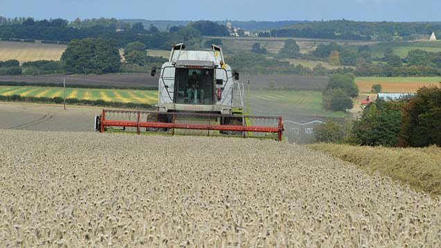 Harvesting wheat at Malcolm and Rodney Foster's farm in North Yorkshire.