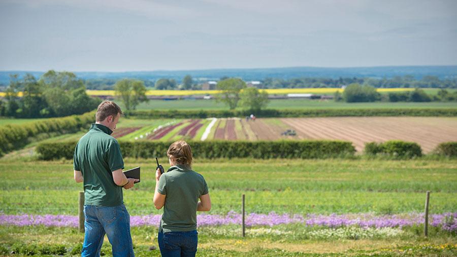 երիտասարդ ֆերմերներ ոլորտումCultura REX Shutterstock